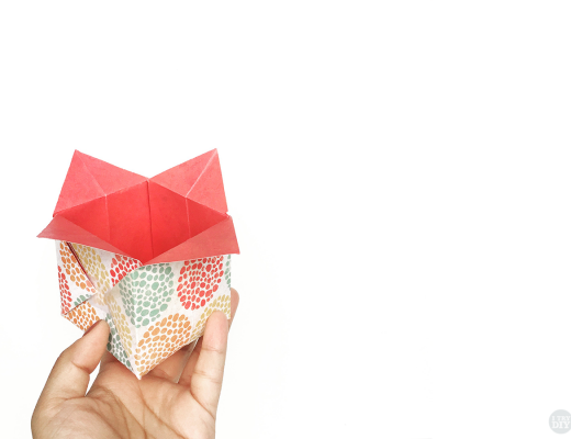 Origami Chinese Takeout Box